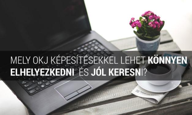 Mely OKJ képesítésekkel lehet könnyen elhelyezkedni és viszonylag jól keresni?